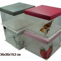 Коробка подарочная  19,5х36х36 см / пластик  10793-9